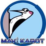Karot, Karotcu, Mavi karot, 0537 920 40 25,